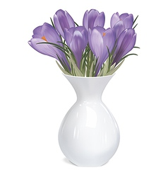 Spring bouquet of crocuses in vase vector image vector image
