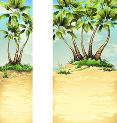 Tropical palm banner vector