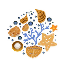 Background with seashell hand drawn vector