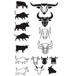 Beef cows bulls vector