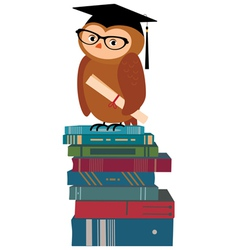 Wise owl and books vector image