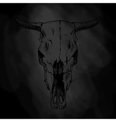 Bulls skull vector