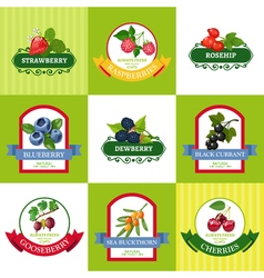 Fresh Berries Labels Flat Icons Set vector image vector image