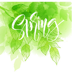 hand lettering spring design on a green and yellow vector image vector image