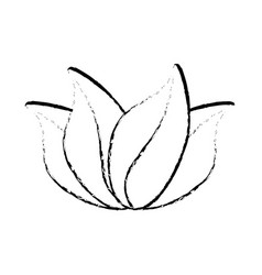 Leaves nature decoration sketch vector