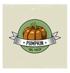 pumpkin vintage set of labels emblems or logo for vector image