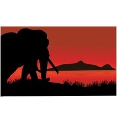 Single elephant silhouette of scenery vector