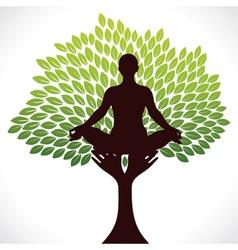 yoga girl in tree vector image