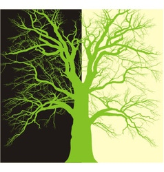 Background with old tree branched vector