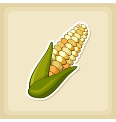 Corn icon harvest thanksgiving vector
