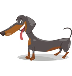 cute dachshund dog cartoon vector image