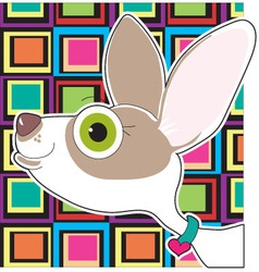 chihuahua portrait vector image vector image
