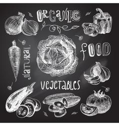 Vegetables sketch set chalkboard vector image