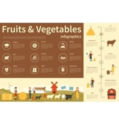 Fruits and vegetables infographic flat vector