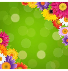 Colorful gerbers flowers border with green bokeh vector
