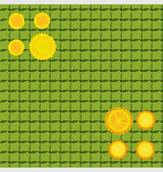 Yellow dandelions on a green background cell vector