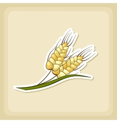 Spikelets wheat icon harvest thanksgiving vector