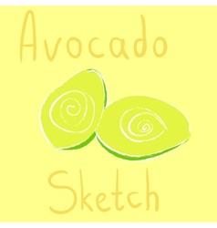Avocado sketch had drawn with chalk vector
