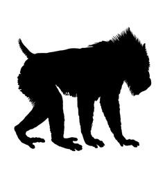 Mandrill silhouette vector