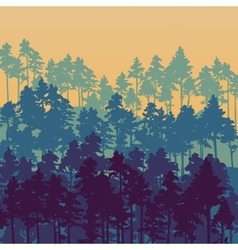 landscape with pine trees vector image