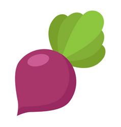 Beet flat icon vegetable and diet vector