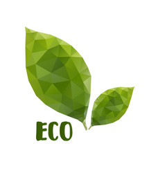 low poly leafs eco concept vector image vector image