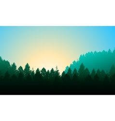 Morning forest Background with pines sky and sun vector image