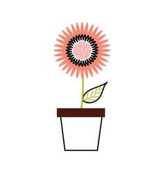 potted dahlia flower floral ornament garden image vector image