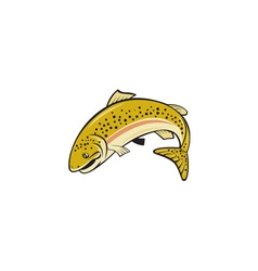 Rainbow trout jumping cartoon isolated vector