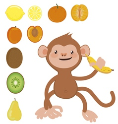 Monkey with banana and fruit set vector