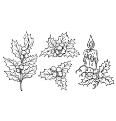 Decorative holly branches and festive candle vector