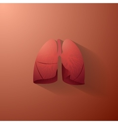 Human lungs with bronchial tree vector
