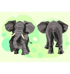 Large grey indian elephant goes forward vector