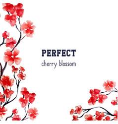 Realistic sakura blossom - japanese red cherry vector