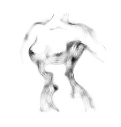 Silhouette of beautiful nude woman vector