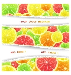 Fruity slices citrus background vector