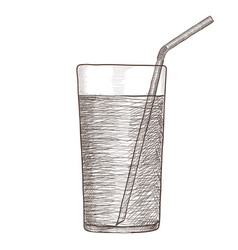 Glass of water with drinking straw hand drawing vector