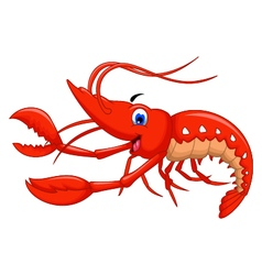 shrimp cartoon for you design vector image vector image