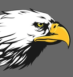 Eagle face side view cartoon vector
