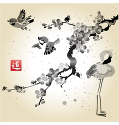 Card with sakura in the bird and flamingos vector image vector image