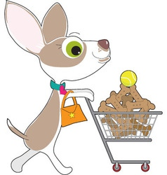 chihuahua shopping vector image