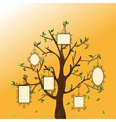 Vintage memories tree vector image