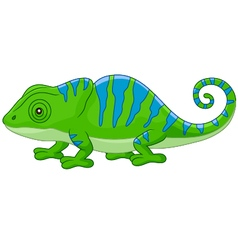 Cartoon cute chameleon vector