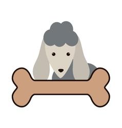 Cute dog and bone vector