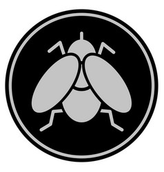 Fly insect black coin vector