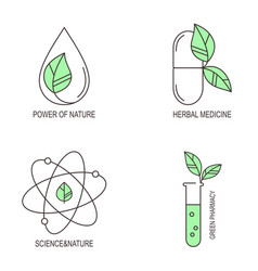 Herbal medicine icons set vector