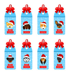 Set christmas labels with heads dogs in santa hats vector