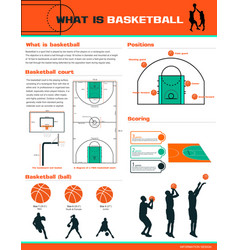 What is basketball vector