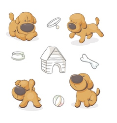 dog in different positions vector image