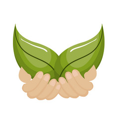hands human with leafs ecology vector image